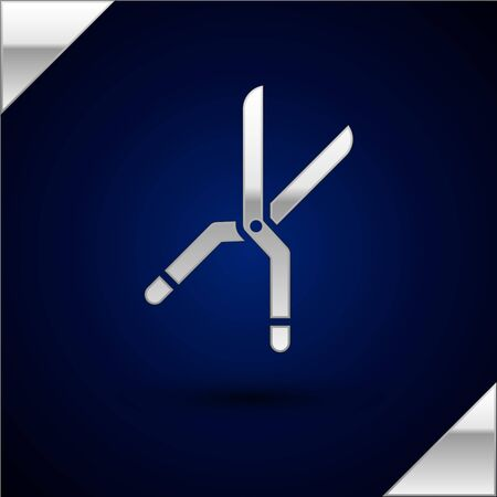 Silver Gardening handmade scissors for trimming icon isolated on dark blue background. Pruning shears with wooden handles. Vector Illustration Çizim