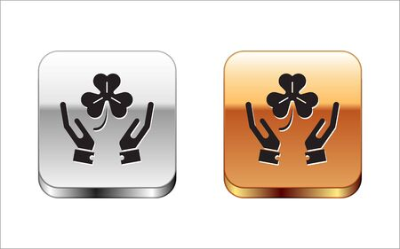 Black Human hands holding four leaf clover icon isolated on white background. Happy Saint Patrick day. Silver-gold square button. Vector Illustration