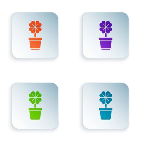 Color Four leaf clover in pot icon isolated on white background. Happy Saint Patrick day. Set icons in colorful square buttons. Vector Illustration Illustration