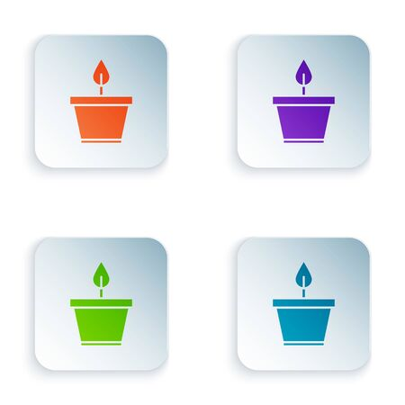 Color Plant in pot icon isolated on white background. Plant growing in a pot. Potted plant sign. Set icons in square buttons. Vector Illustration