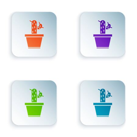 Color Cactus and succulent in pot icon isolated on white background. Plant growing in a pot. Potted plant sign. Set icons in square buttons. Vector Illustration