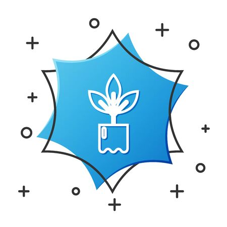White line Plant in bottle icon isolated on white background. Seed and seedling. Leaves sign. Leaf nature. Blue hexagon button. Vector Illustration