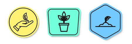 Set line Sprout in hand of environmental protection, Flowers in pot and Sprout. Colored shapes. Vector
