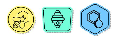Set line Bee and honeycomb, Hive for bees and Honeycomb. Colored shapes. Vector
