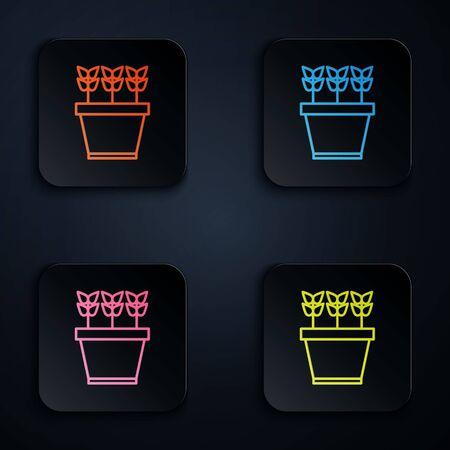 Color neon line Plants in pot icon isolated on black background. Plants growing in a pot. Potted plant sign. Set icons in colorful square buttons. Vector Illustration Illustration
