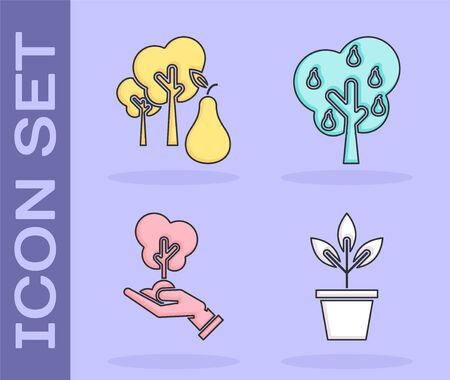 Set Flowers in pot, Tree with pears, Tree in hand of environmental protection and Tree with pears icon. Vector