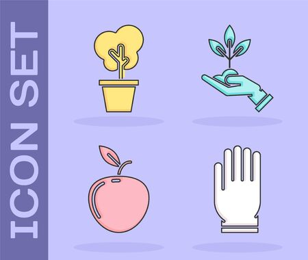 Set Garden gloves, Tree in pot, Apple and Plant in hand of environmental protection icon. Vector