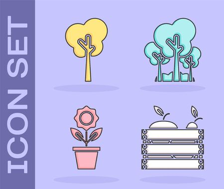 Set Wooden box for fruits and vegetables, Tree, Flower in pot and Trees icon. Vector Illusztráció