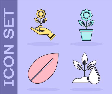 Set Watering plant, Hand holding flower, Leaf and Flower in pot icon. Vector