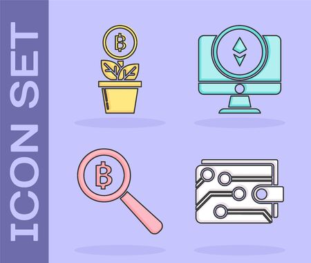 Set Cryptocurrency wallet, Bitcoin plant in the pot, Magnifying glass with Bitcoin and Monitor and Cryptocurrency coin Ethereum ETH icon. Vector