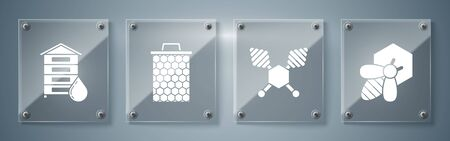 Set Bee and honeycomb, Honey dipper stick, Honeycomb and Hive for bees. Square glass panels. Vector
