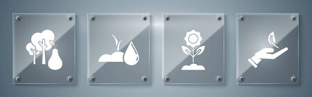 Set Sprout in hand of environmental protection, Flower, Watering sprout and Tree with pears. Square glass panels. Vector