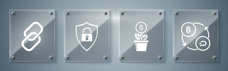 Set Cryptocurrency exchange, Bitcoin plant in the pot, Shield security with lock and Chain link. Square glass panels. Vector Çizim