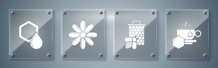 Set Cup of tea with honey, Bee and honeycomb, Flower and Honeycomb. Square glass panels. Vector
