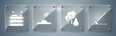 Set Garden rake in work, Tree with pears, Sprout and Wooden box for fruits and vegetables. Square glass panels. Vector