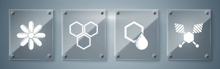 Set Honey dipper stick, Honeycomb, Honeycomb and Flower. Square glass panels. Vector