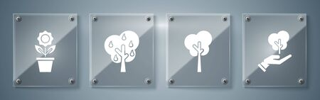 Set Tree in hand of environmental protection, Tree, Tree with pears and Flower in pot. Square glass panels. Vector
