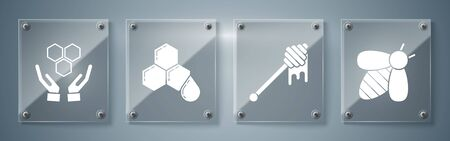 Set Bee, Honey dipper stick with dripping honey, Honeycomb and Honeycomb and hands. Square glass panels. Vector