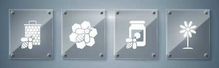 Set Flower, Jar of honey with bee, Bee and honeycomb and Bee and honeycomb. Square glass panels. Vector
