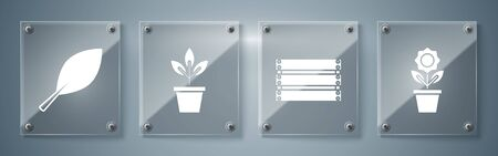 Set Flower in pot, Wooden box, Flowers in pot and Leaf. Square glass panels. Vector Çizim