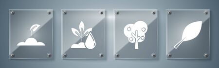 Set Leaf, Tree with apple, Watering plant and Sprout. Square glass panels. Vector