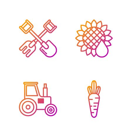 Set line Carrot, Tractor, Shovel and rake and Sunflower. Gradient color icons. Vector