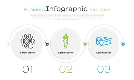 Set line Sunflower, Carrot and Cheese. Business infographic template. Vector Ilustracja