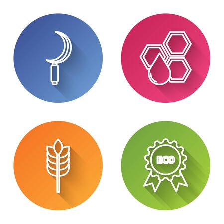Set line Sickle, Honeycomb, Cereals with rice, wheat, corn, oats, rye and Banner, label, tag, logo for eco. Color circle button. Vector Ilustração