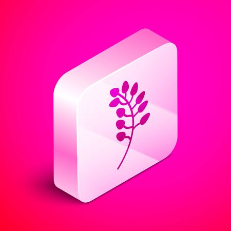 Isometric Willow leaf icon isolated on pink background. Silver square button. Vector Illustration