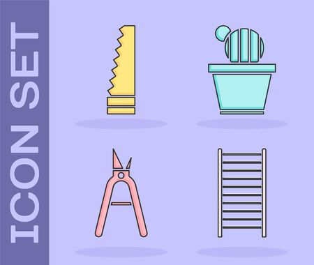 Set Wooden staircase, Garden saw, Gardening handmade scissors and Cactus and succulent in pot icon. Vector