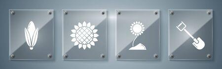 Set Shovel, Sunflower, Sunflower and Corn. Square glass panels. Vector