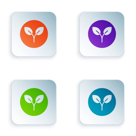 Color Bio fuel icon isolated on white background. Eco bio. Green environment and recycle. Set colorful icons in square buttons. Vector Illustration