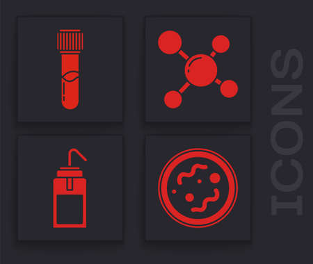 Set Bacteria, Test tube and flask chemical, Molecule and Laboratory wash bottle icon. Vector.