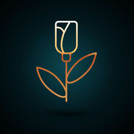 Gold line Flower rose icon isolated on dark blue background. Vector. Ilustrace