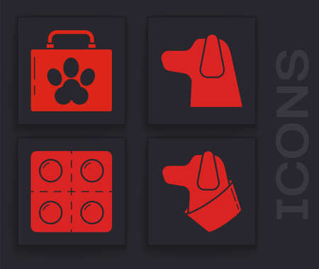 Set Dog, Pet first aid kit, Dog and Dog and pills icon. Vector.