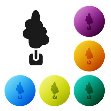 Black Tree icon isolated on white background. Forest symbol. Set icons in color circle buttons. Vector