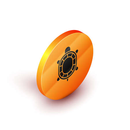 Isometric Turtle icon isolated on white background. Orange circle button. Vector