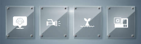 Set Action camera, Whale tail in ocean wave, Flashlight and Scallop sea shell. Square glass panels. Vector 일러스트