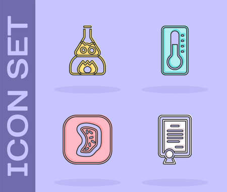 Set Certificate template, Test tube flask on fire, Bacteria and Medical thermometer icon. Vector