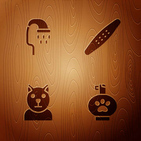 Set Pet shampoo, shower, Cat and Nail file pet on wooden background. Vector