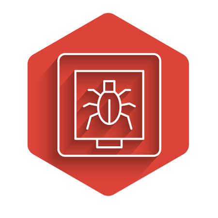 White line Insects in a frame icon isolated with long shadow. Herbarium. Red hexagon button. Vector Illustration