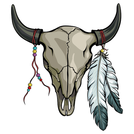 Hand drawn buffalo skull with feather. Native American bull skeleton vector illustration.