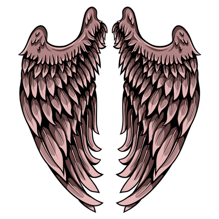 Wing of seraphim. Detailed hand drawn pair of wings with lights and shadows vector illustration.