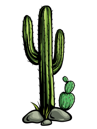 Mexican desert cactus with spines. Cartoon vector of a green eriocactus with black outline. Illustration