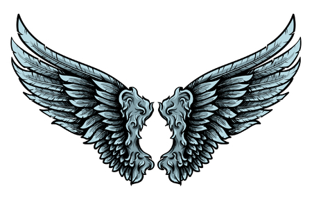 Hawk wings pair vector image. Hand drawn feathers with shadows and lights.