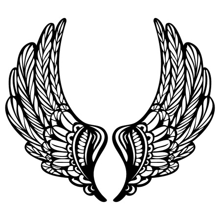 Beautiful wing vector silhouette. Creative hand drawn sketching.