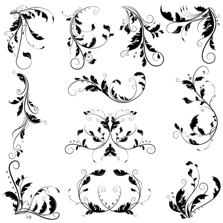 Black delicate abstract floral graphic with curly branches and ornamental swirl leaves. Beautiful floral collection.