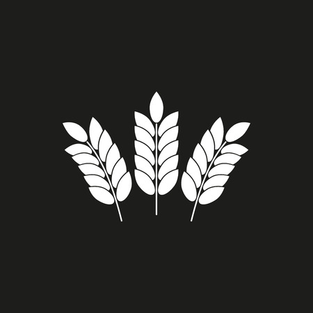 Barley vector icon. White illustration isolated on black background for graphic and web design.