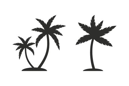 coco: Palm tree vector icon. Illustration isolated on white background for graphic and web design.
