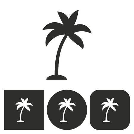 subtropical: Palm tree - black and white icons. Vector illustration.